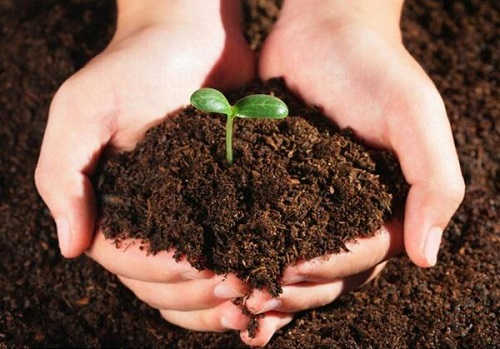 土壤及地下水修复